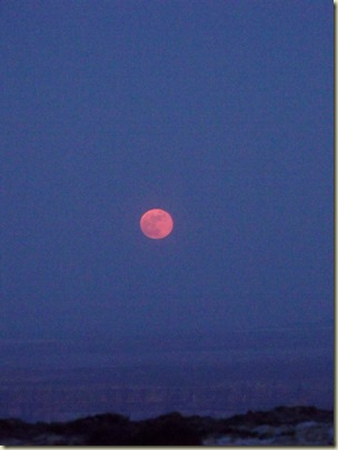 05 Full moon Pt Imperial NR GRCA NP AZ (768x1024)