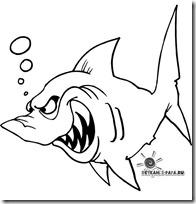 tiburon blogcolorear (4)