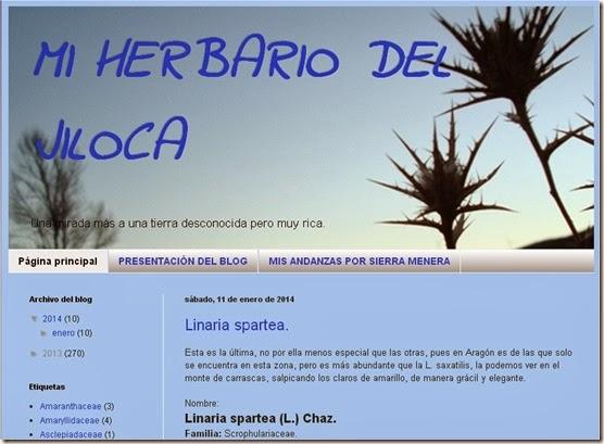 Herbario Jiloca1