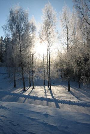 Finland 150_thumb[15]