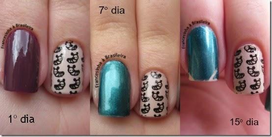 Evolução protector nail