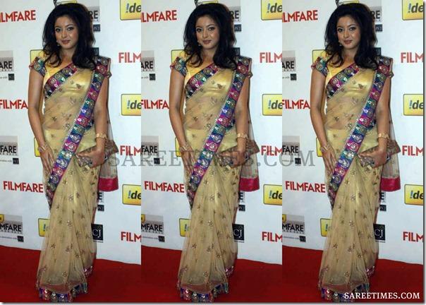 Tanushree_Dutta_Shimmer_Saree
