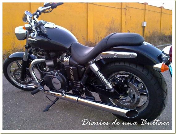 Triumph Speedmaster-3