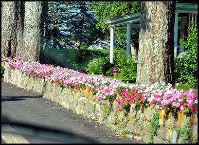 01 - Somesville Rt 102 - Flowered rock wall