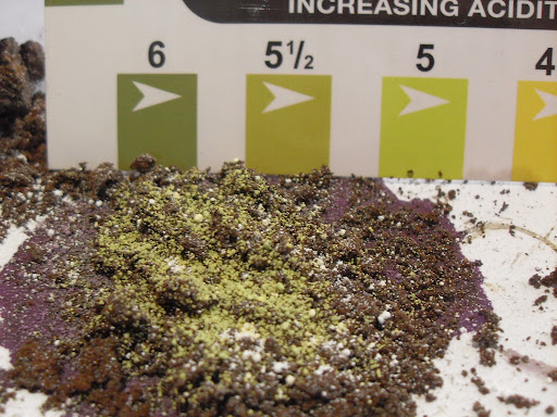 pH test on coffee grounds that were exposed to the elements for 9 months
