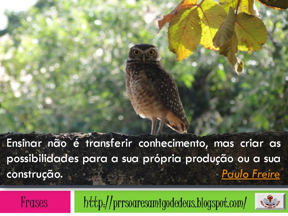 Frase Pensadores 5 Quotes Links