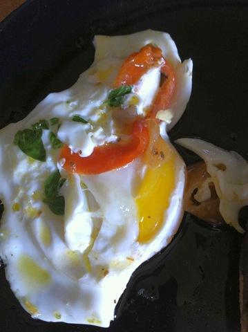 use egg 6