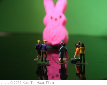'Easter Bunny Sighting' photo (c) 2011, Kate Ter Haar - license: http://creativecommons.org/licenses/by/2.0/