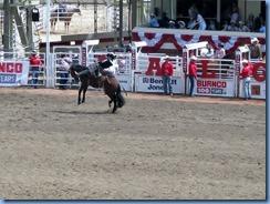9387 Alberta Calgary - Calgary Stampede 100th Anniversary - Stampede Grandstand - Calgary Stampede Rodeo Novice Saddle Bronc Championship