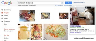 Google image search - demoiselle de canard