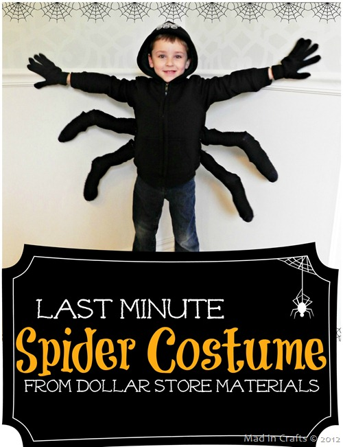 Last Minute Spider Halloween Costume