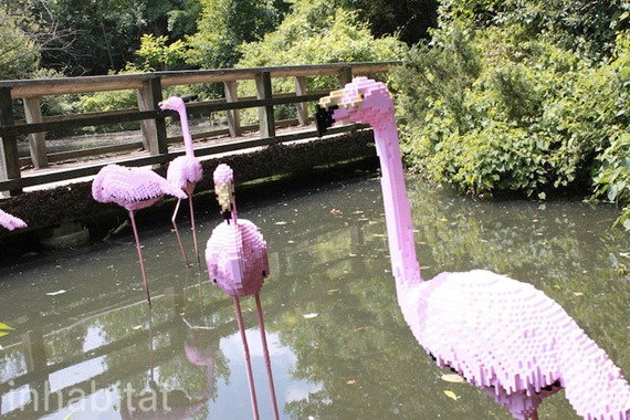 A flock of pink flamingos stand in real water. The LEGO Masters are hosting a series of LEGO building events and workshops for families to get creative and build their own creations.
