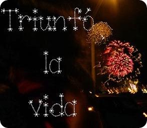 130915 Sun w36 d258 Viva Mexico Fuegos Artificiales con abuelos JR y RG (28)