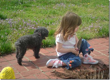 March 15 2012 Mimi's Garden 037 edited