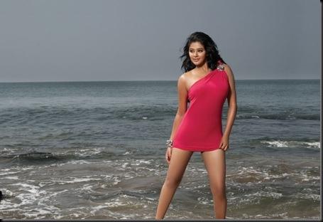Priyamani CCL-Calendar-2012-Images-4