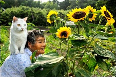 Miyoko Ihara