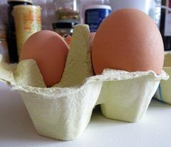 2013-egg2