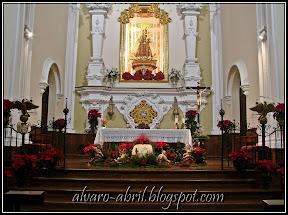 carmen-coronada-malaga-floral-vestimenta-navidad-2011-alvaro-abril-(10).jpg