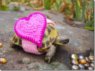 cosasdivertidas tortugas con ganchillo (8)