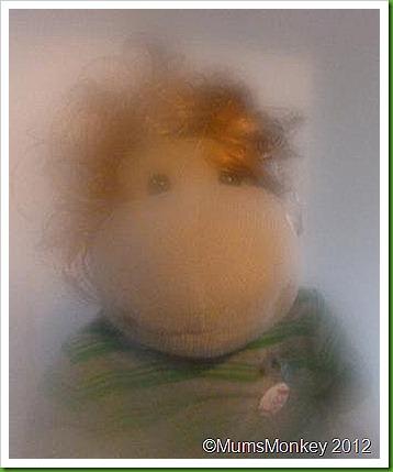 Romantic Monkey Picture