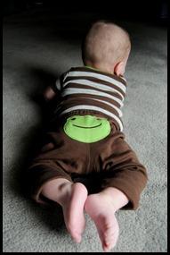 frogtush