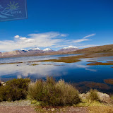 Arica - Parque Nacional Lauca  (26 de 48).jpg
