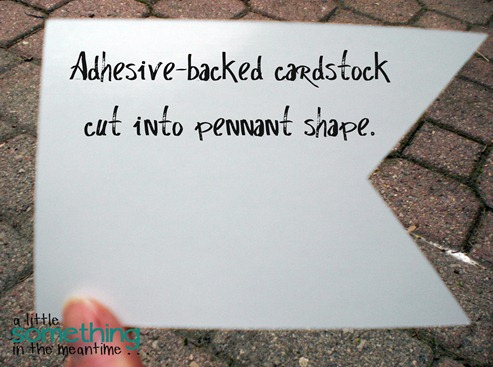 Adhesive-backed cardstock WM