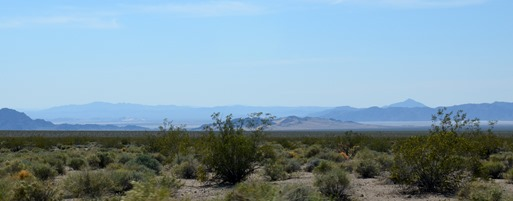The Mojave National Preserve
