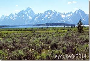 Yellowstone NP and Teton NP 079