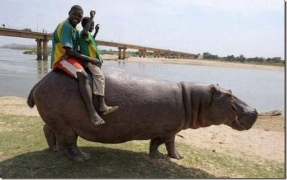 meanwhile-africa-040