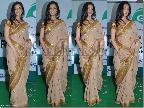 Richa_Georgette_Saree