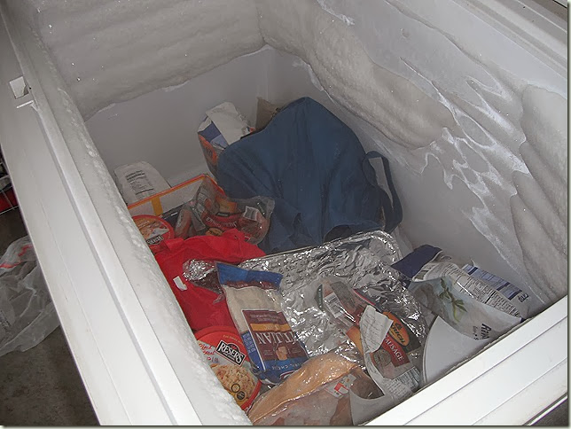 Freezer full of food and ice