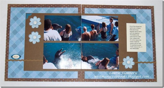 _C036035 swimming with the dolphins (Medium)