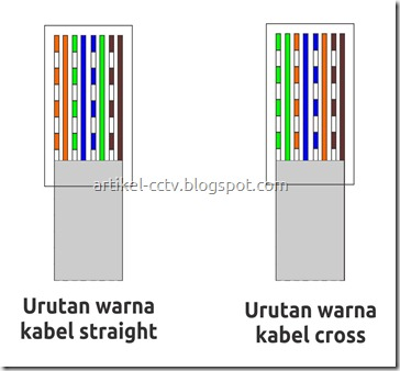 urutan kabel straight dan cross