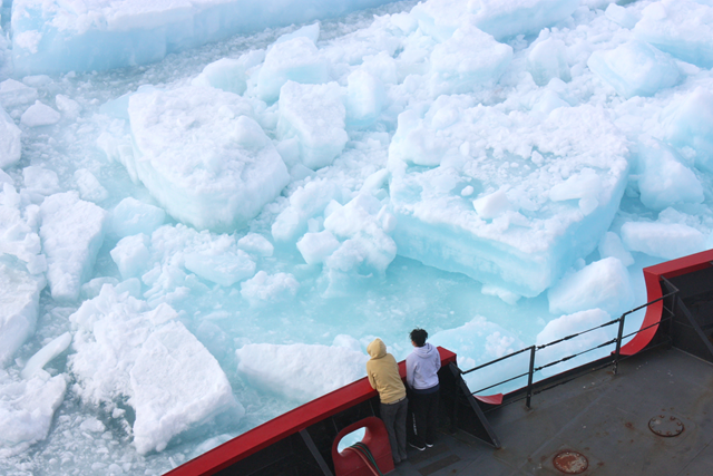 Scientists watch from the deck of the U.S. Coast Guard Cutter 'Healy' as it cuts through multiyear sea ice in the Arctic Ocean on 6 July 2011. Photo: Kathryn Hansen / NASA