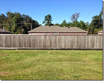 Running & Fence Staining (10)