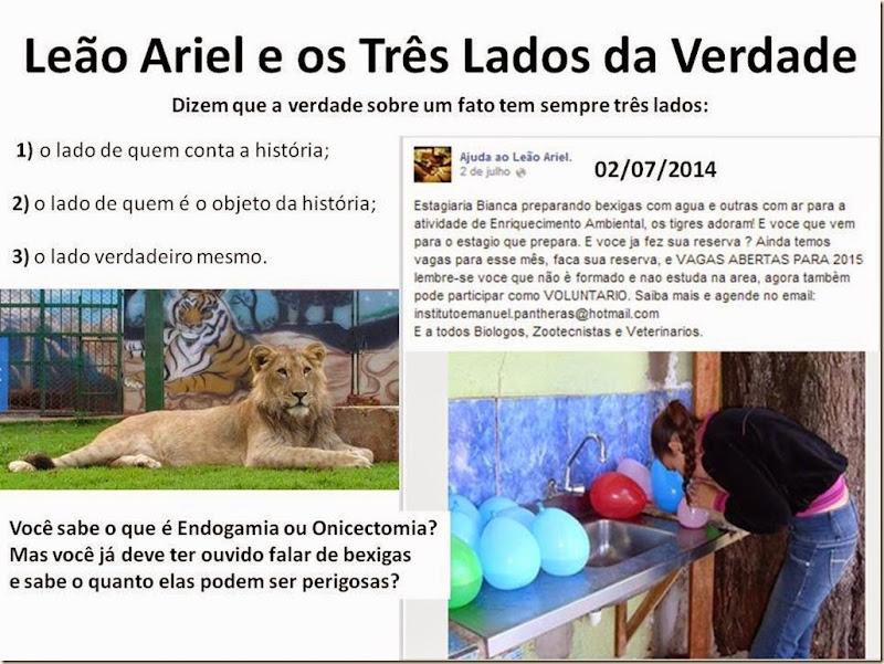 3-ariel