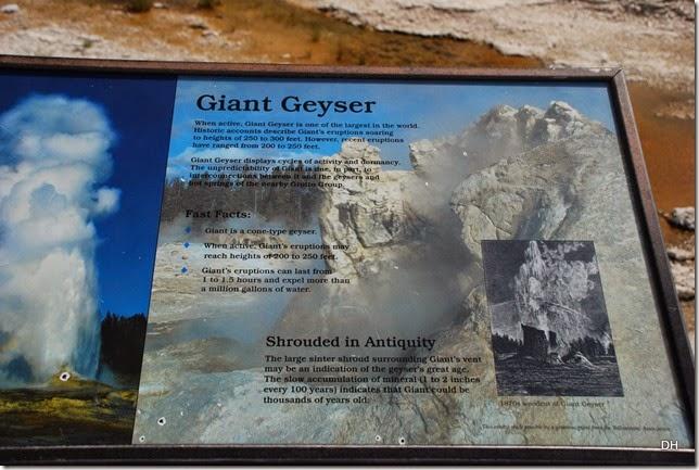08-08-14 B Yellowstone NP (267)
