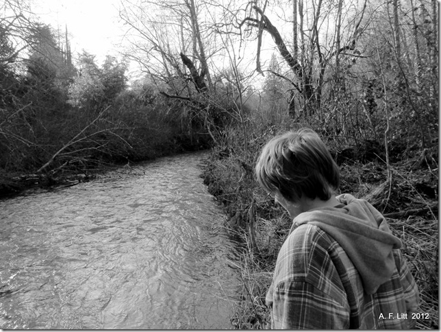 Springwater Corridor.  Gresham, Oregon.  January 28, 2012.