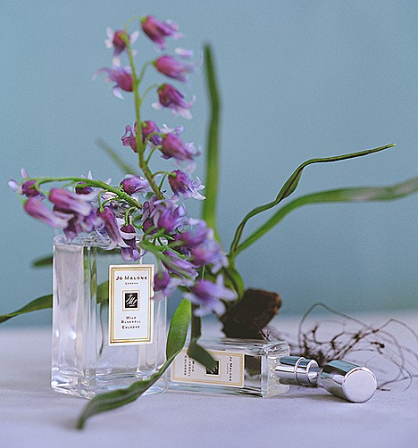 JO MALONE WILD BLUEBELL COLOGNE  REVIEW