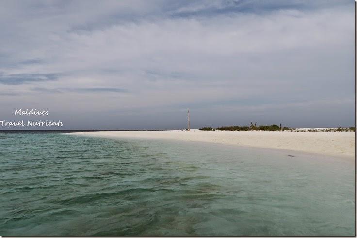 馬爾地夫 野餐島 浮潛 (55)