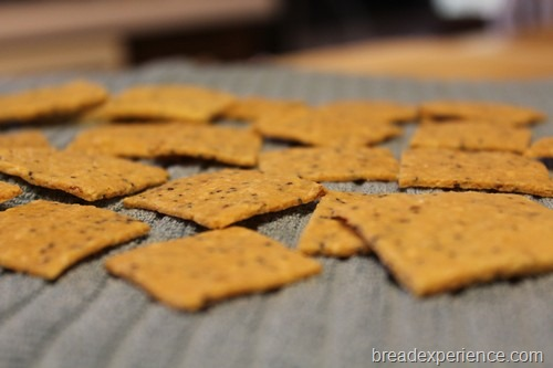 grain-free-crackers_00013