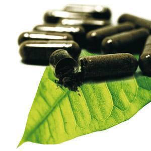 Pholia Negra Para Emagrecer, Preços, Onde Comprar