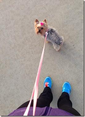 marathon recovery walk