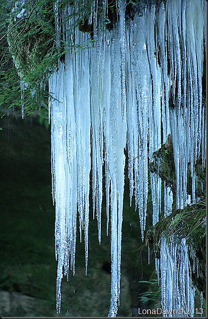 CF_Icicles2_Jan42013