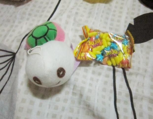 turtle, ladyE