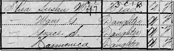 Harmonica Shea in the 1900 U.S. census