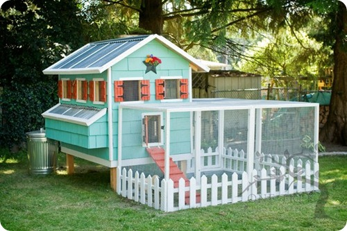 dream-chicken-coop