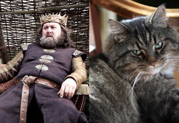 E se os personagens de Game of Thrones fossem gatos 5