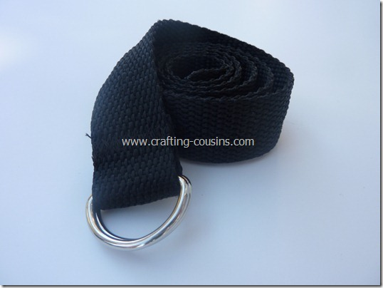 belt (16)